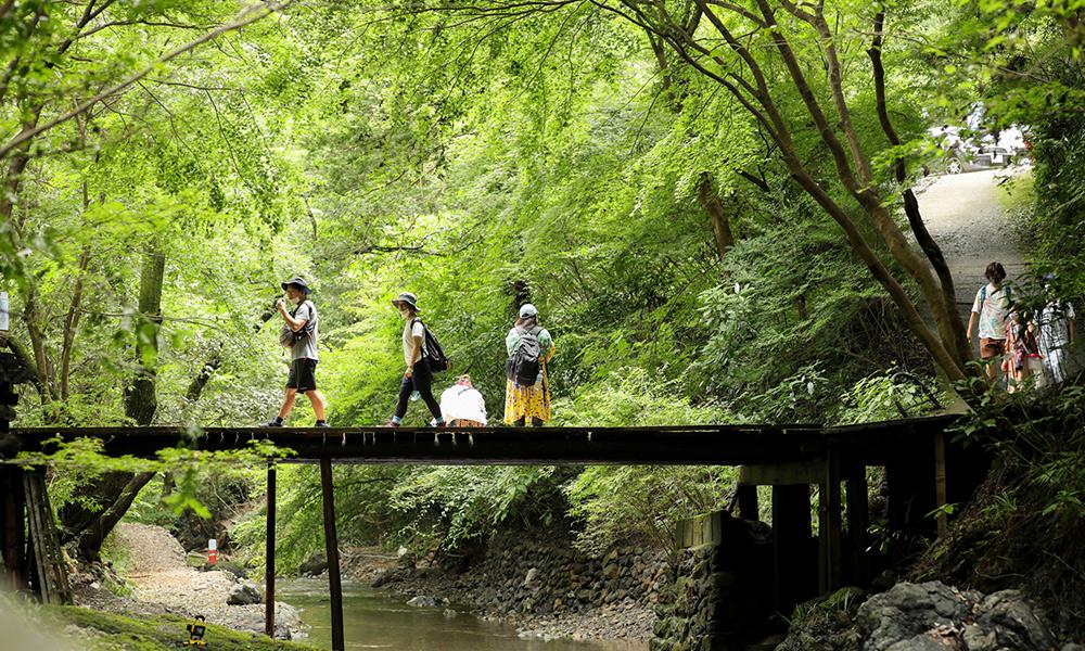 自然人村の風景